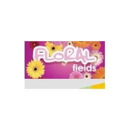 odswiezacz-powietrza-kwiatowy